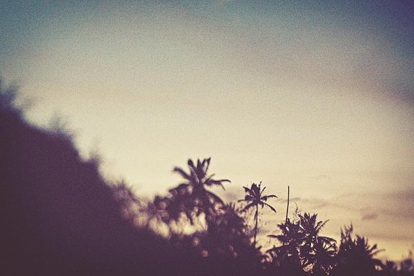 Hanalei_Sunset_0088