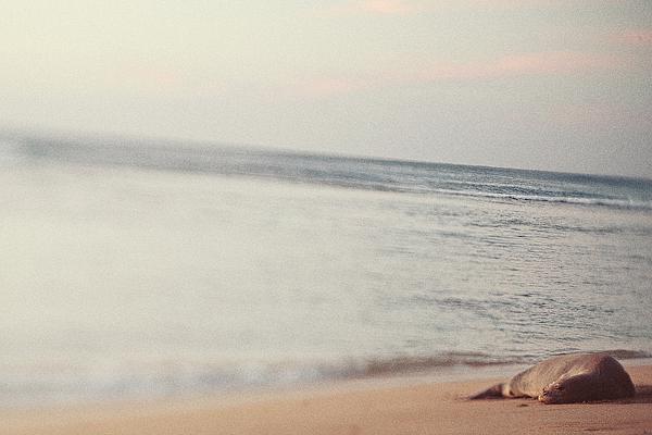 Hanalei_Sunset_0078